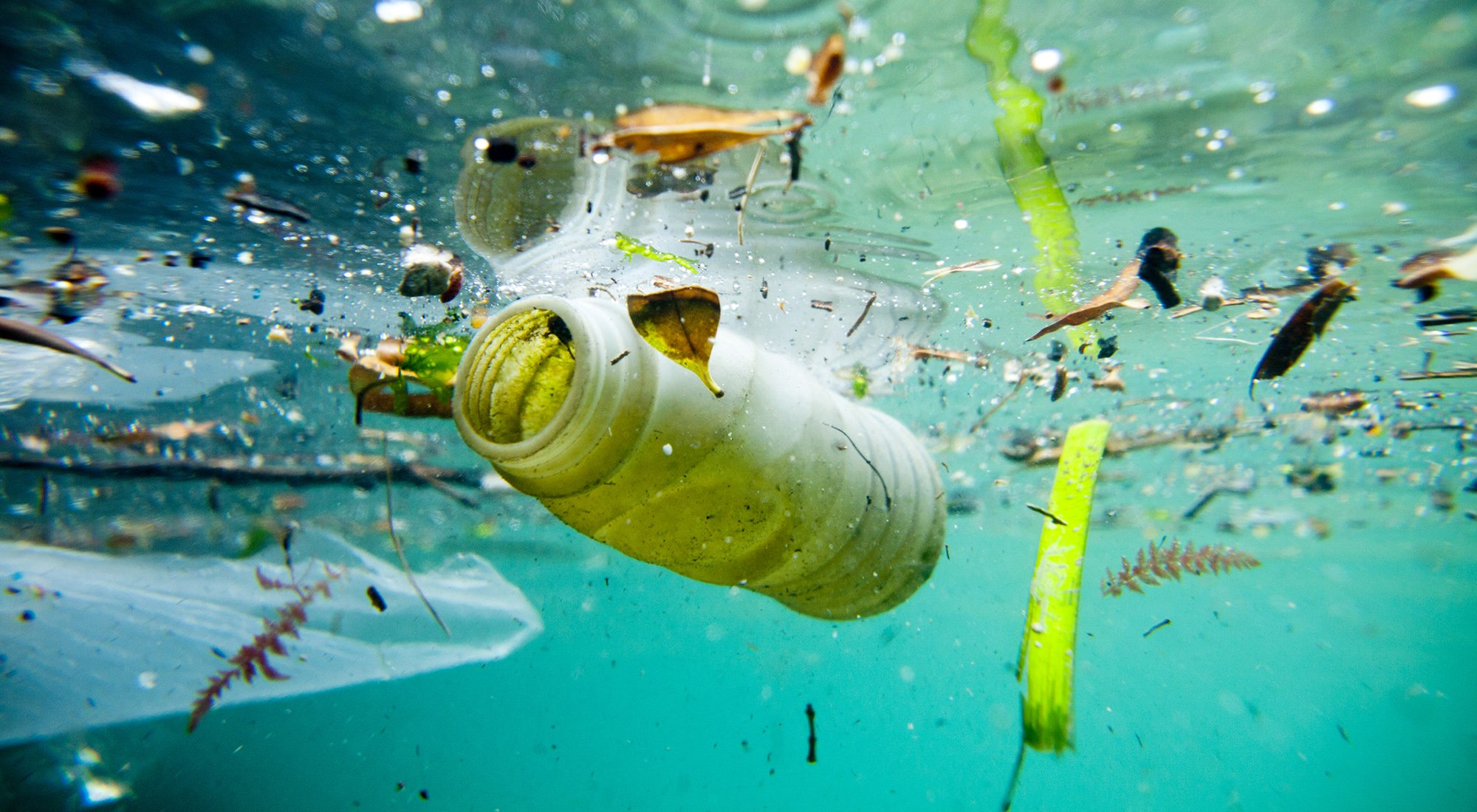 WEATHER-MIC - microplastics in the marine environment